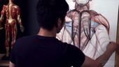 Anatomy Workshop Volume 5