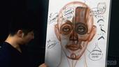 Anatomy Workshop Volume 4