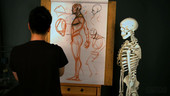 Anatomy Workshop Volume 1