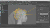 Creating a Female Hairstyle for Production with Maya XGen