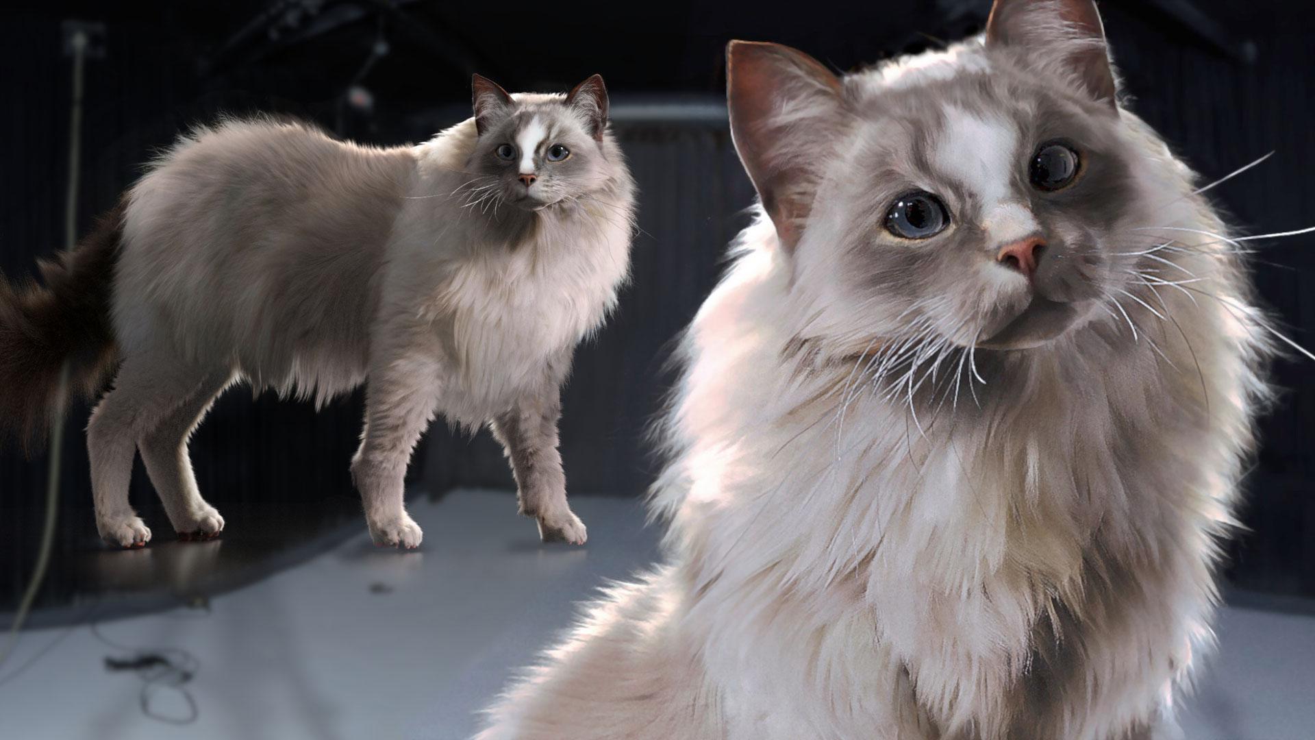 Creating Creature Hair & Fur Grooms in Houdini